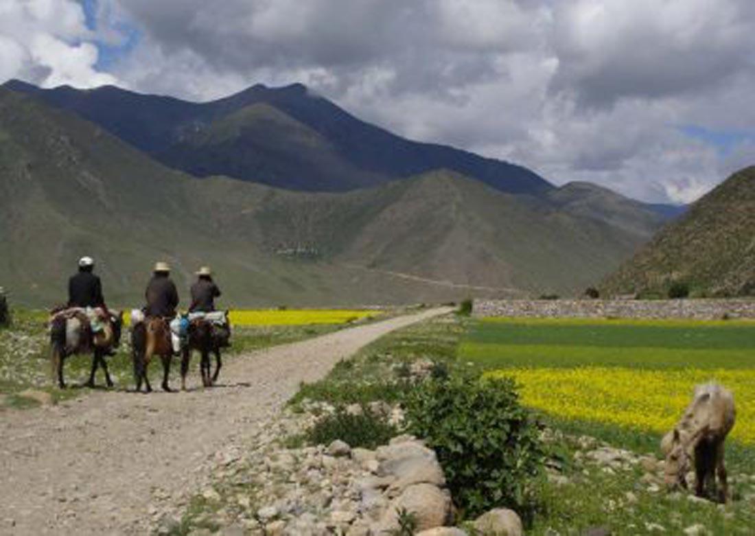 Beautiful-village-Tibet